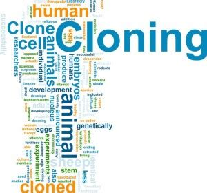 Human cloning pros and cons: should it be legal? - netivist
